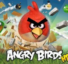 Rozzuření ptáci útočí